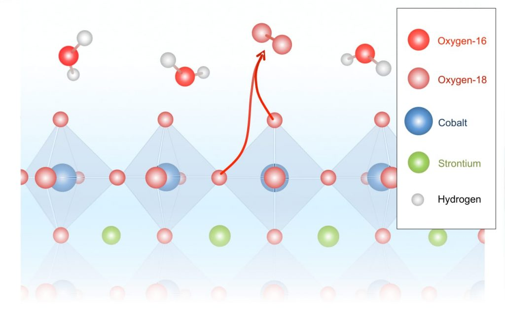 Releasing oxygen from water: Better catalysts for energy